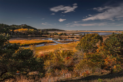 Wellfleet Cape Cod