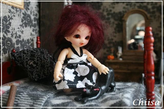 Dollhouse et Diorama de Chiisa - Photos diorama Alice (p7) - Page 7 15674448922_be127cca97_z