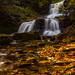 Falling into the Gold ... by Ken Krach Photography