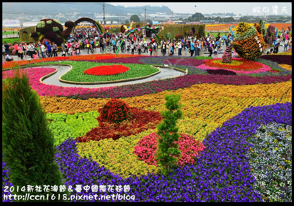 2014新社花海節&臺中國際花毯節DSC_5024