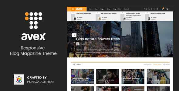Avex WordPress Theme free download