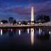 City Twilight over Blossoms by navinsarma