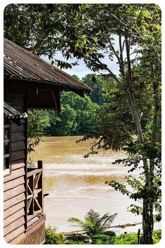 Borneo-20170410-IMG_7243