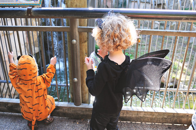 Boo at the Zoo - 2014