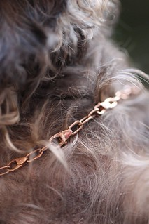 dodo charms & necklaces