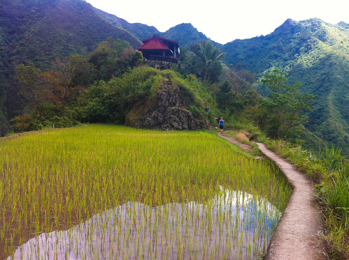 philippines banaue cordilleraadministrativeregion