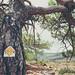 European Hiking Trail E4 by taytomFFM