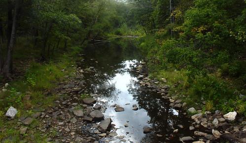 Lee Creek - Devils Den State Park, Northwest Arkansas