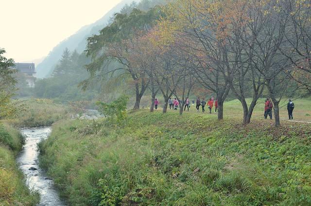 紅葉と青空の秋の長野旅行 白馬・栂池 2014年10月12日