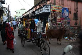 Traffic in Puri, Orissa
