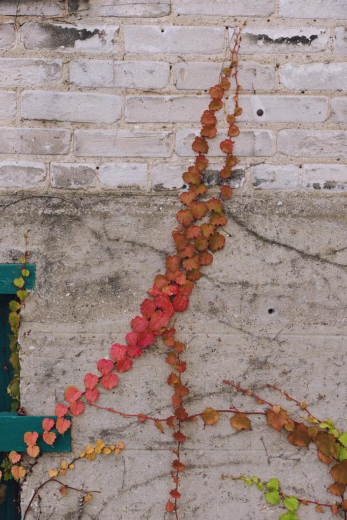 Kisiel-2014-10-17-0070
