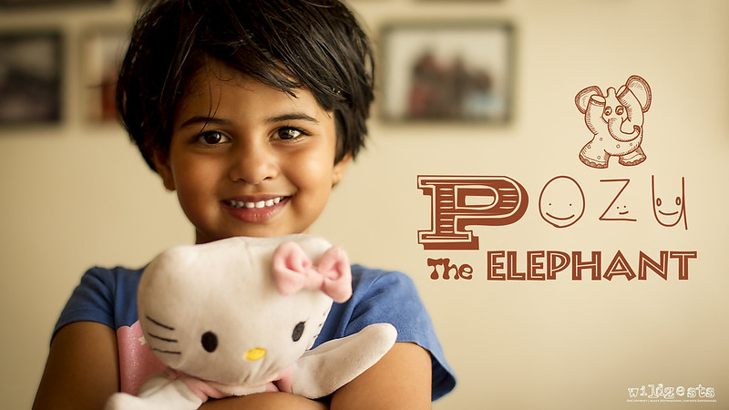 Pozu the Elephant