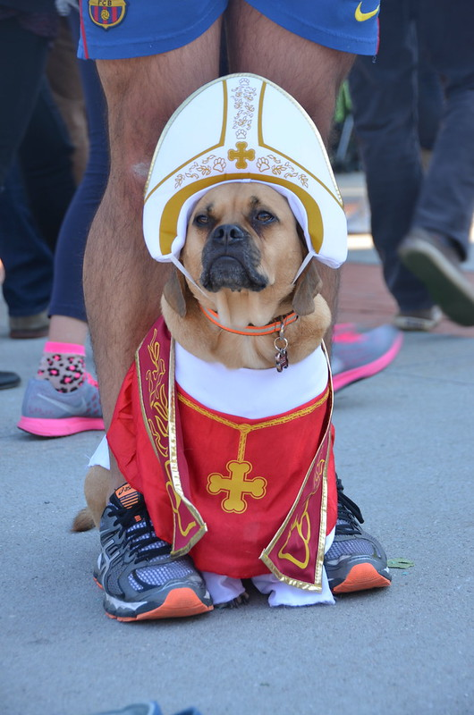 Puppy Pontiff