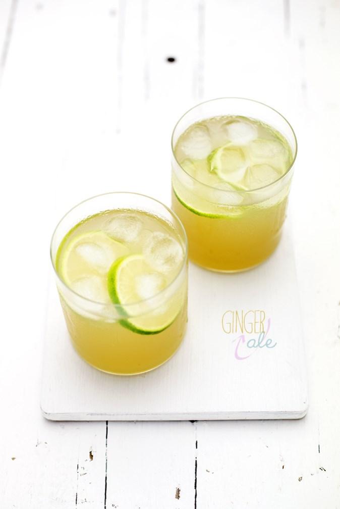ginger ale blog