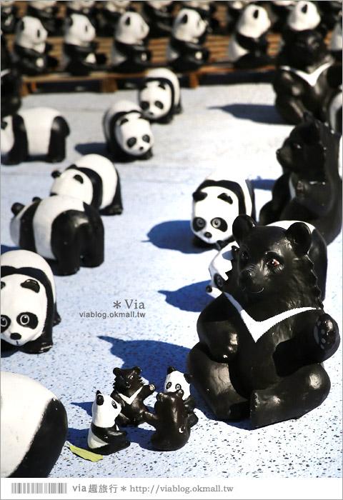 【台中】大都會歌劇院~可愛紙熊貓大軍來襲!台中七期的新亮點!17
