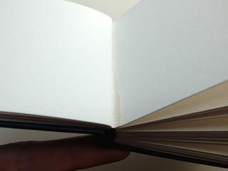 watercolor sketchbooks08