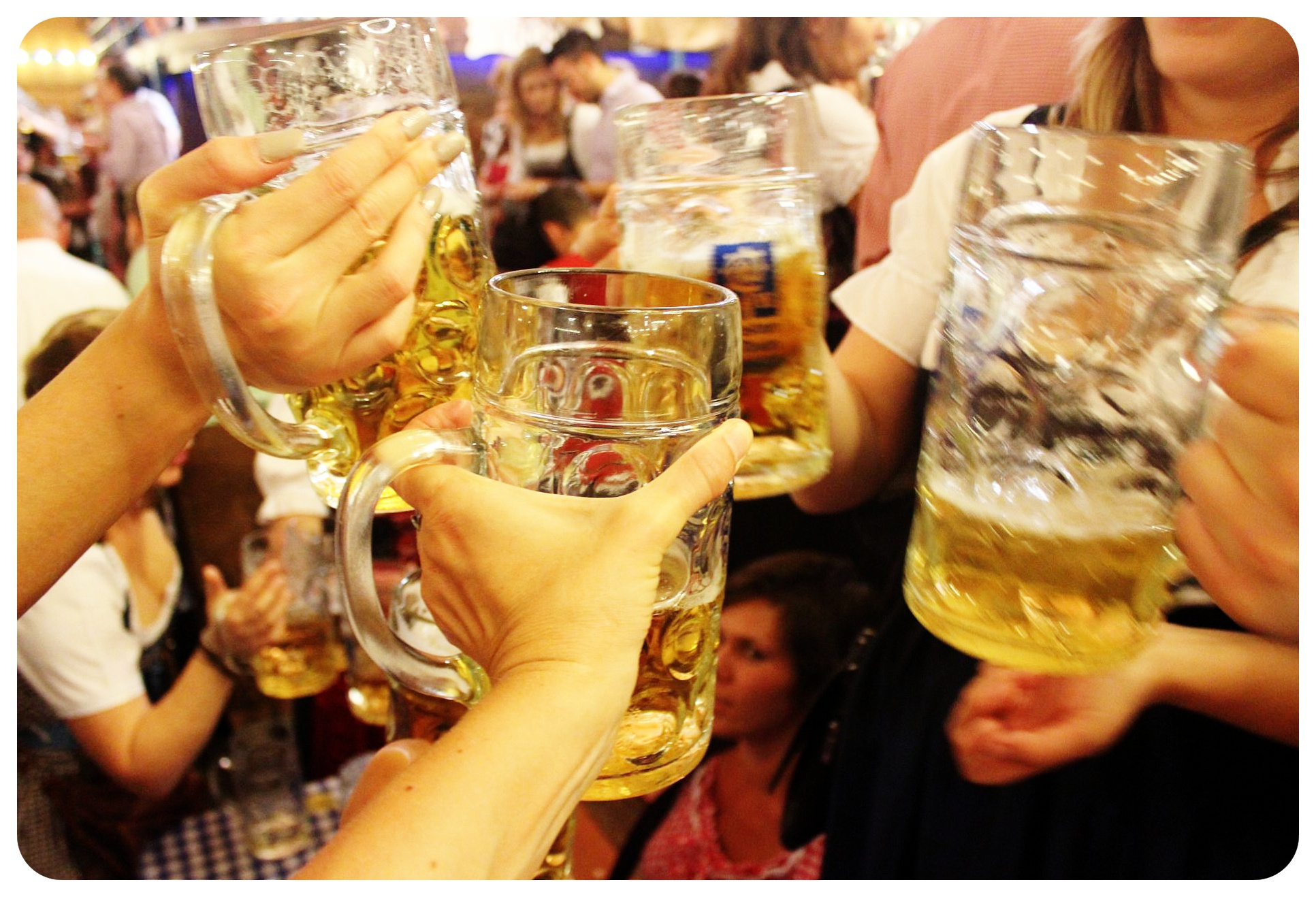 oktoberfest beer glasses
