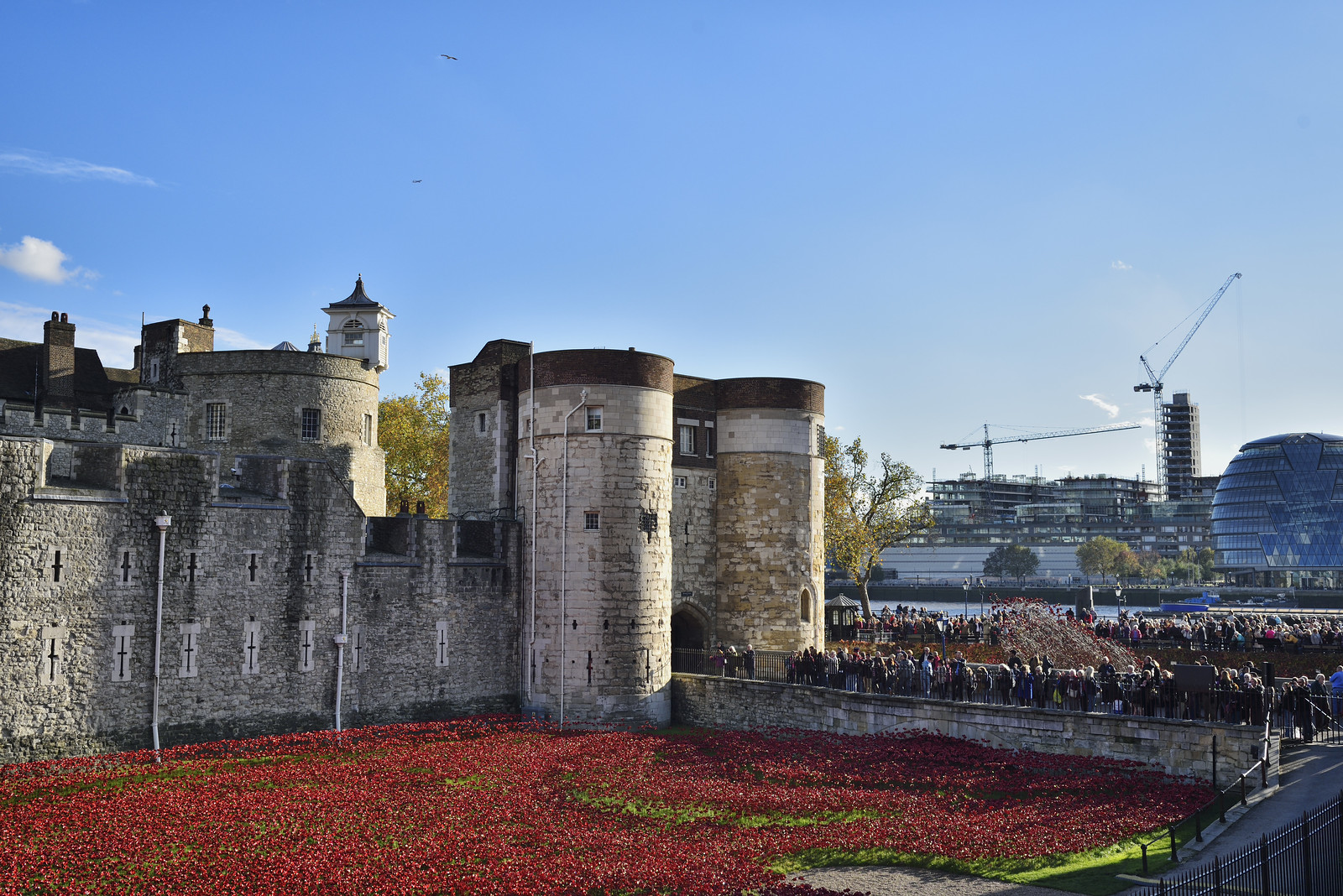 Tower of London - Blood Swept Lands and Seas of Red