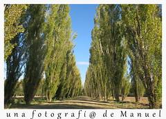 retazos de Aranjuez