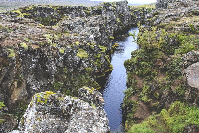 Iceland_Spiegeleule_August2014 105