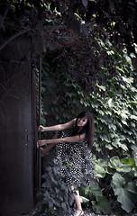 82/365 Let me in