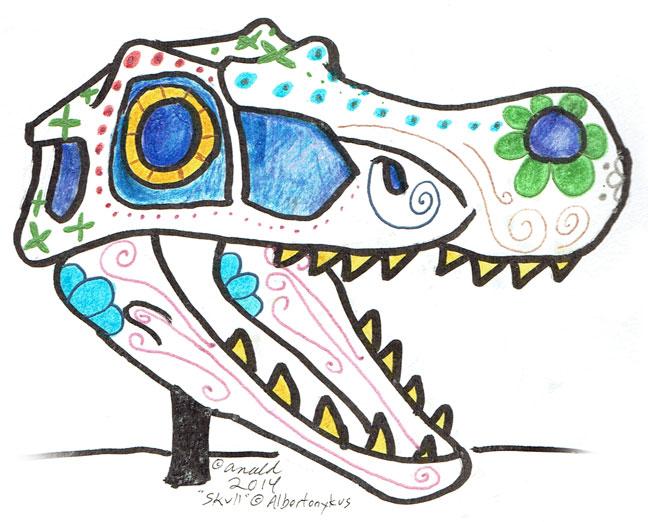 11.1.14 - Albertonykus' Skull