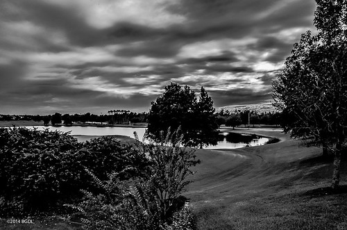blackandwhite monochrome landscape florida countryclub weeklytheme lakewoodranch nikond7000 afsnikkor18105mm13556g bgdl lightroom5 flickrlounge