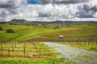 Shenendoah Valley
