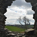 the view of Down Cathedral from Inch Abbey by conall..
