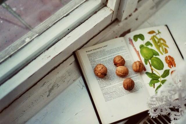 worteinbildern - Quiet autumn moments at the windowsill