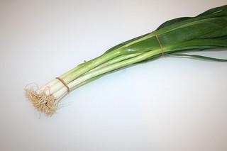 04 - Zutat Frühlingszwiebeln / Ingredient scallions