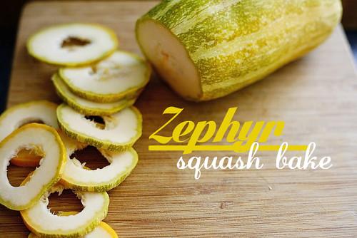 recipe zephyr squash bake