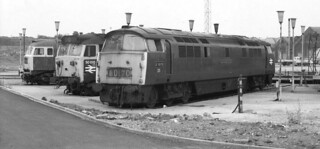 Top Link Trio - Old Oak Common