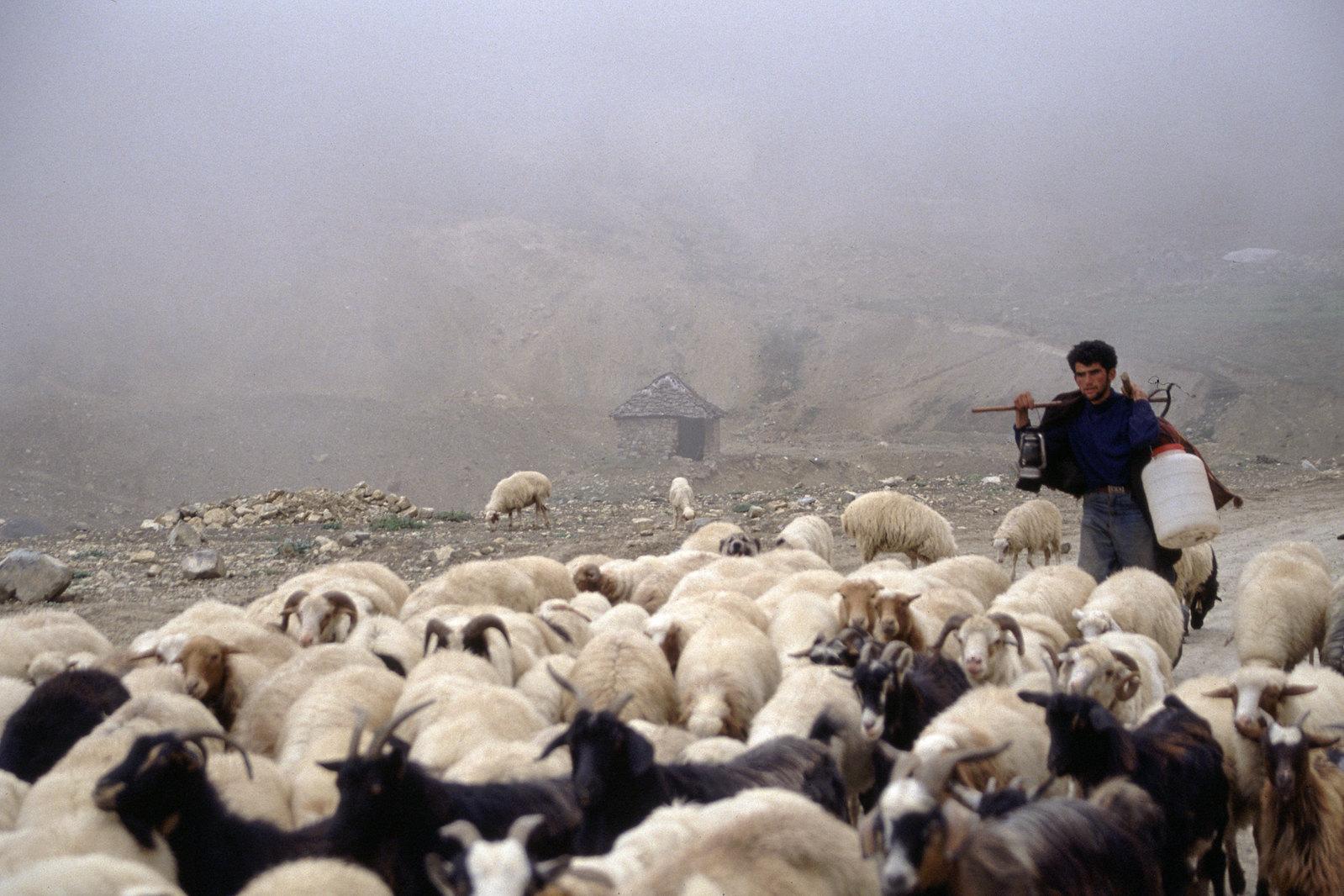 Road trip en Iran - Rencontre dans la montagne
