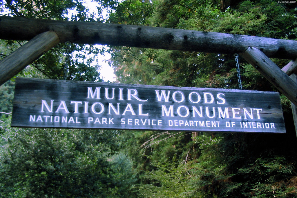 muir woods national monument Plan to visit muir woods national monument, united states get details of location, timings and contact find the reviews and ratings to know better.