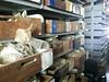 Gorée Island Archaeological Digital Repository 2014 12291609766