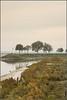 Tidal river /1