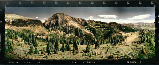 79 Year Old Panoramic