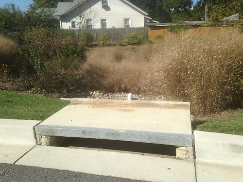 Image of a storm drain before art.