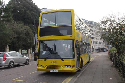 Yellow Buses DD285