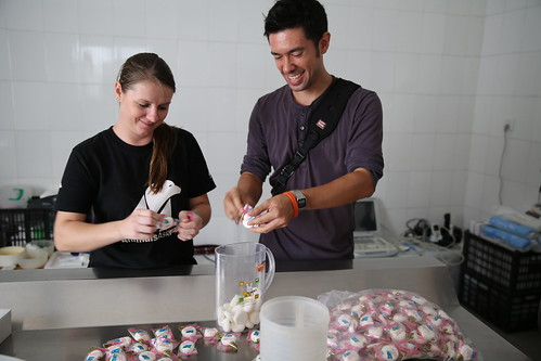 Senior Vet Nurse Wendy Leadbeater and Photographer Peter Yuen put bear medicine in marshmallows