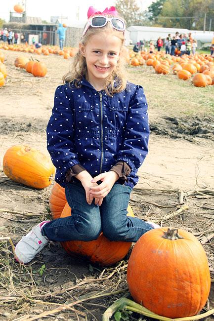 Aut-on-a-pumpkin