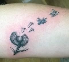 Dandelion with birds