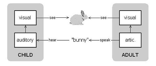 Vygotsky bunny 1