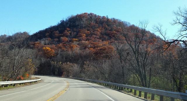 a bluff covered with red oak trees beyond the highway