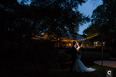 Umlauf Sculpture Garden Wedding