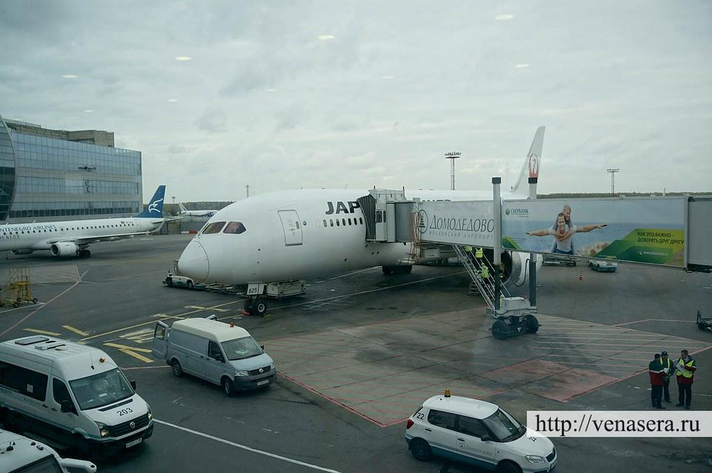 Boeing 787 Самолет Москва - Токио