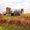 Oct 29 - three {3 silos} #fmsphotoaday #three #silos #farm #rural #autumn