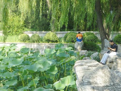 Beijing-Parc Longtan (31)