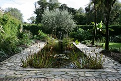 stream(0.0), woodland(0.0), flower(0.0), walkway(0.0), botanical garden(1.0), backyard(1.0), shrub(1.0), garden(1.0), fish pond(1.0), yard(1.0), landscaping(1.0), landscape(1.0), pond(1.0),